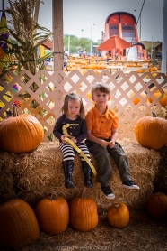 pumpkin_patch-2