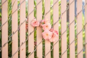 web_AVPhoto-8719